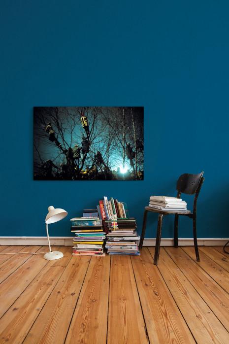 » Auf den Bäumen bei Flutlicht« an deiner Wand