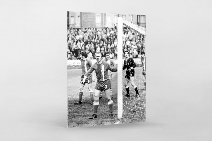 Urbanczyk am kurzen Pfosten - Hallescher FC Chemie - 11FREUNDE BILDERWELT