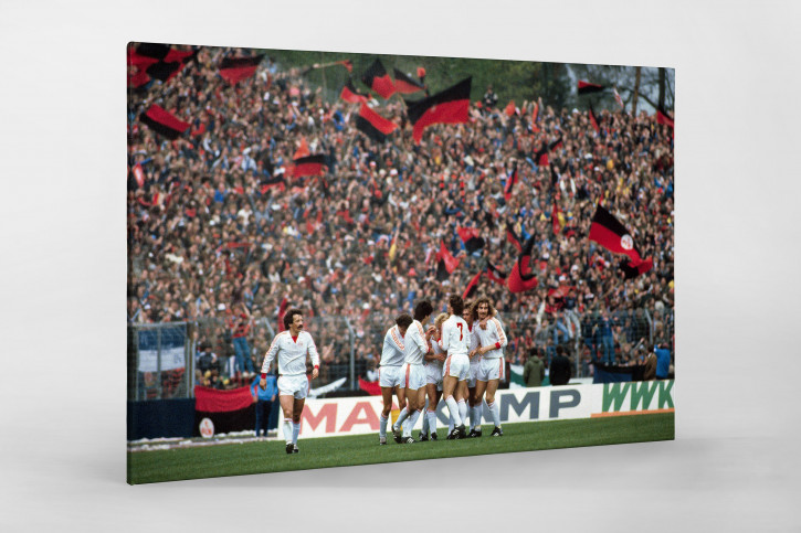 Nürnberger Torjubel - 1. FC Nürnberg - 11FREUNDE BILDERWELT