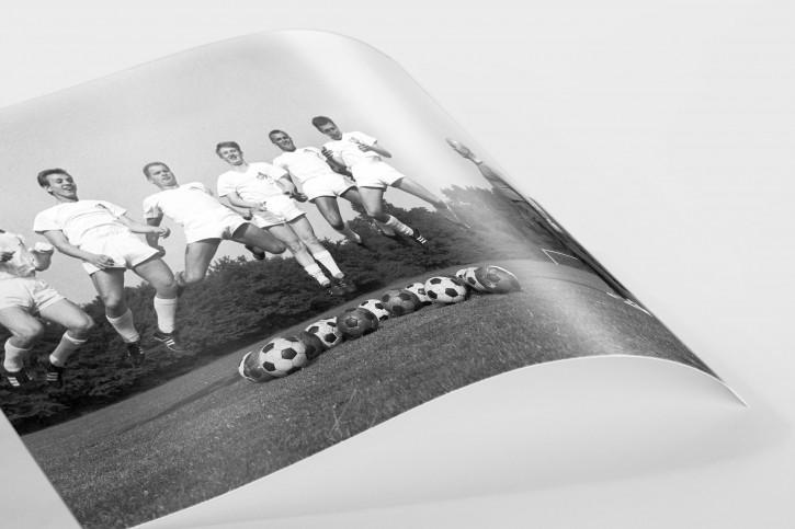 Neuzugänge vom 1. FC Köln 1964 - 11FREUNDE BILDERWELT