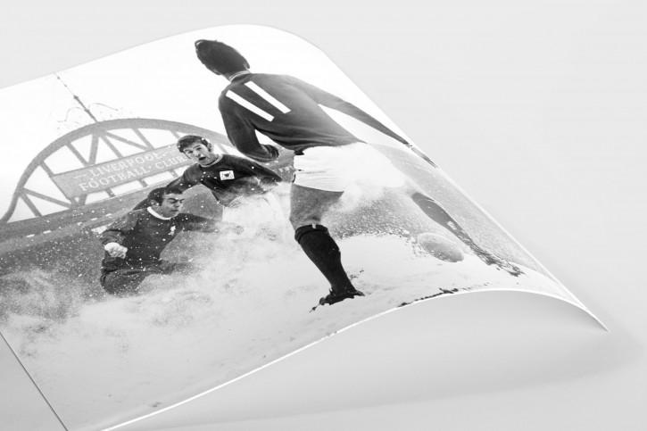Schnee in Liverpool  - Fußball Foto Wandbild - 11FREUNDE SHOP