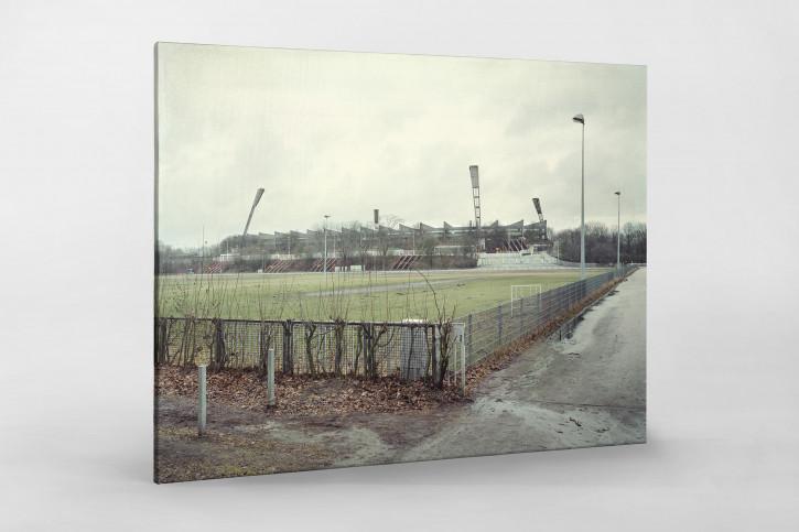 Witness of Glory Times: Hamburg (2) - Markus Wendler - Stadion Foto als Wandbild