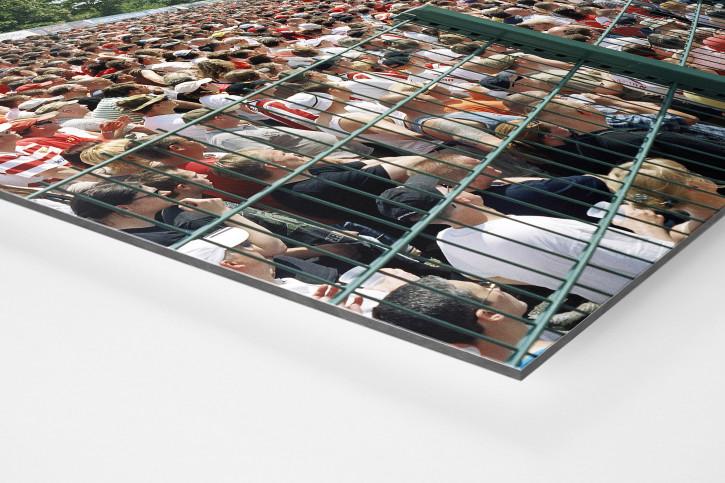 Berlin Alte Förstrei 2008 - 11FREUNDE BILDERWELT