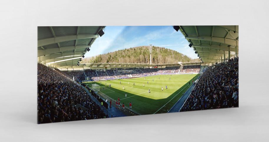 Aue (2018) - Stadion Wandbild Erzgebirgsstadion - 11FREUNDE SHOP
