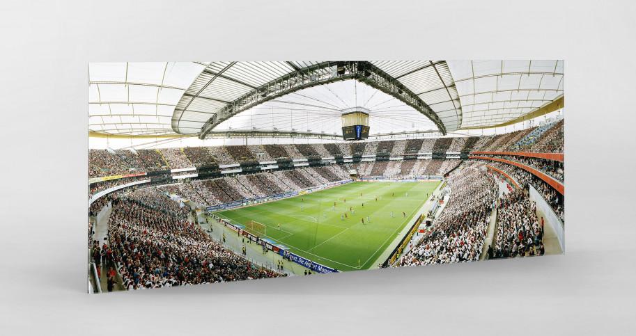 Frankfurt Commerzbank Arena 11FREUNDE SHOP
