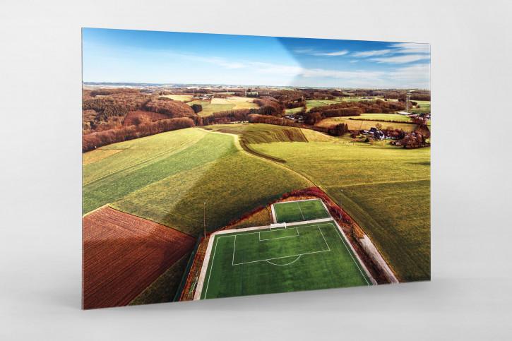 Fußballplatz in Feld-, Wald- und Wiesenlandschaft - Wandbild - 11FREUNDE SHOP