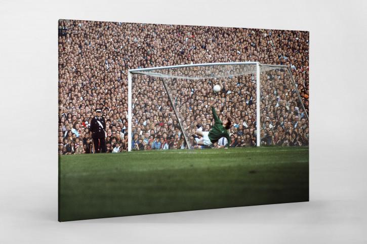 Fans hinter dem Torwart - Fußball Wandbild - 11FREUNDE SHOP