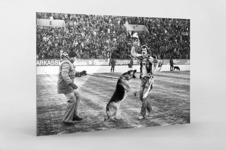 Schäferhund vs. Stuttgart-Fan - Wandbild 1. FC Nürnberg vs. VfB Stuttgart Saison 1978/79