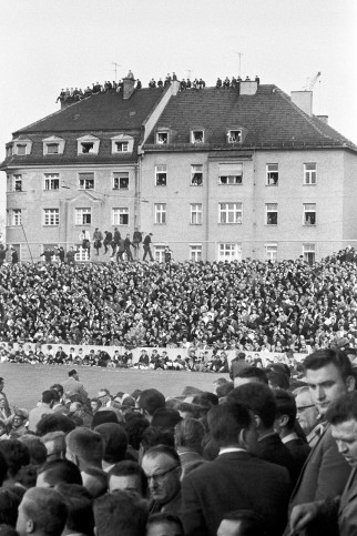 Zuschauer auf dem Dach - Stadion an der Grünwalder Straße - 11FREUNDE SHOP