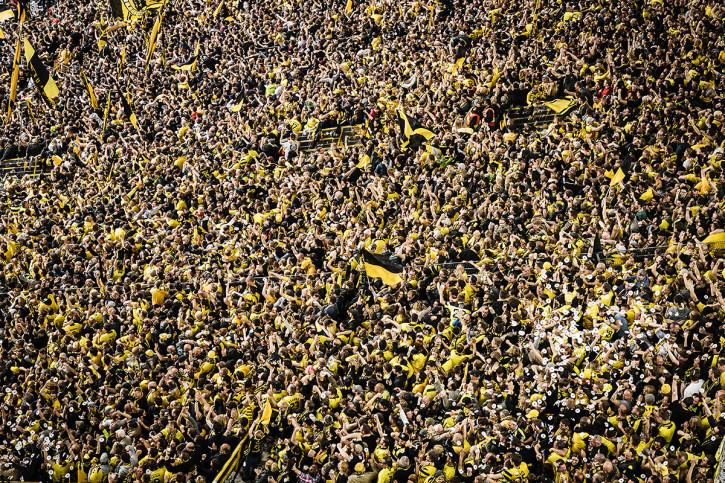 Gelbe Wand - Farbe (2) - 11FREUNDE SHOP - Fußball Wandbild - BVB Borussia Dortmund