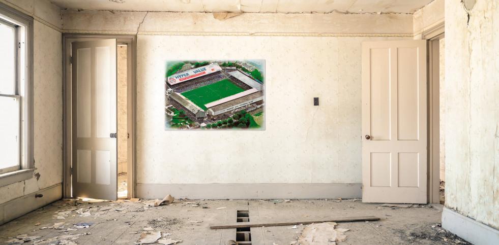Stadia Art: Ninian Park - Poster bestellen - 11FREUNDE SHOP