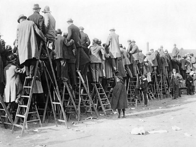 Fans auf der Leiter (1) - 11FREUNDE BILDERWELT
