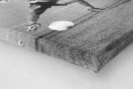 Jay-Jay vs. Titan als Leinwand auf Keilrahmen gezogen (Detail)