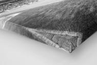 Eckball Millerntor in Schwarzweiß als Leinwand auf Keilrahmen gezogen (Detail)