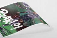 Pizarro (AllStarGoals - Werder) als Poster