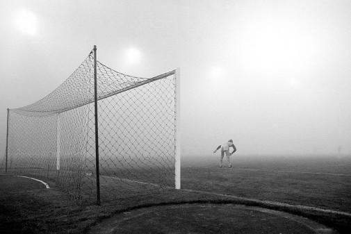 Pfaff im Nebel