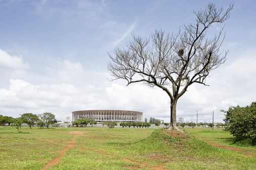 Baum vor dem Estádio Nacional de Brasília