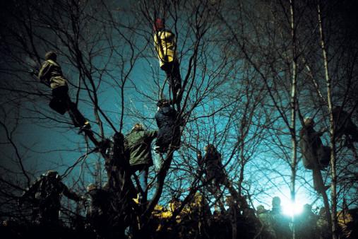 Auf den Bäumen bei Flutlicht - 11FREUNDE BILDERWELT