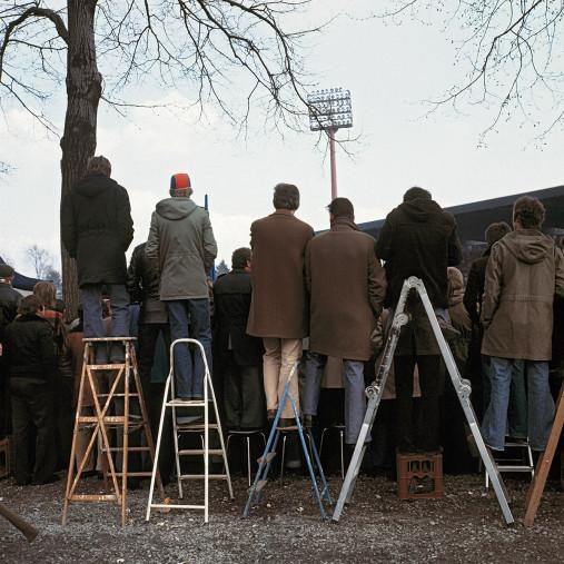 Fans auf der Leiter (2) - 11FREUNDE BILDERWELT