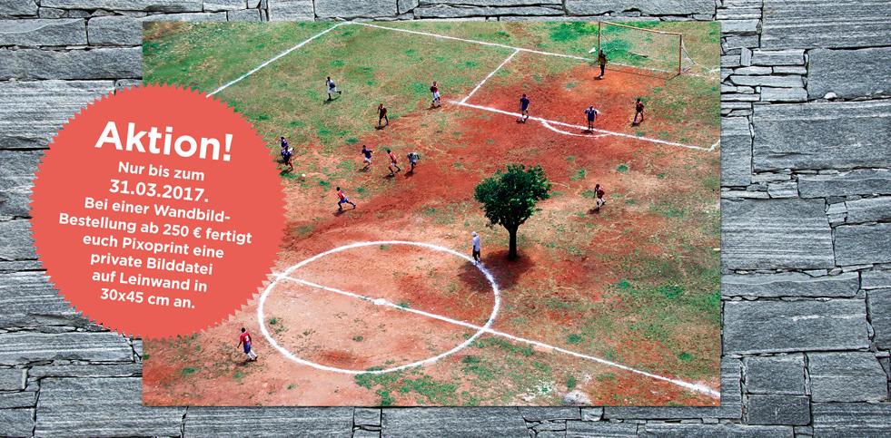 11FREUNDE SHOP - Fussball Wandbilder - Bestseller